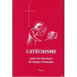 Catéchisme pour le diocèse...